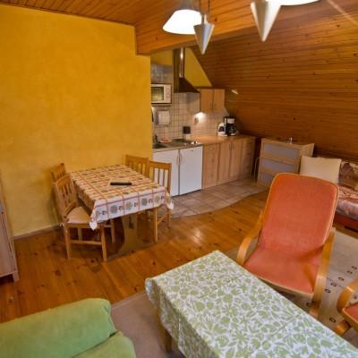 Pokój dzienny - Apartament Kokosz